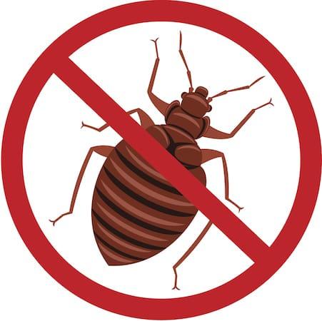 kill bedbugs in Nashville